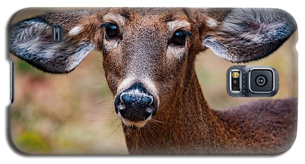 Miss Deer 1 Galaxy S5 Case