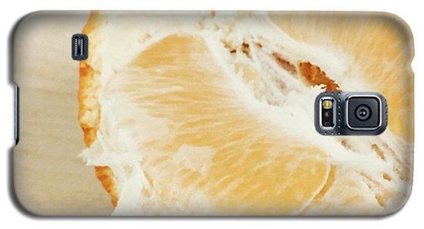Orange Galaxy S5 Case - Tangelo by Nancy Ingersoll
