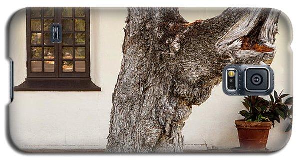 Mission Tree Galaxy S5 Case