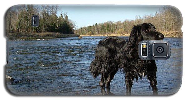 Mississippi River Dog On The Rocks Galaxy S5 Case by Kent Lorentzen
