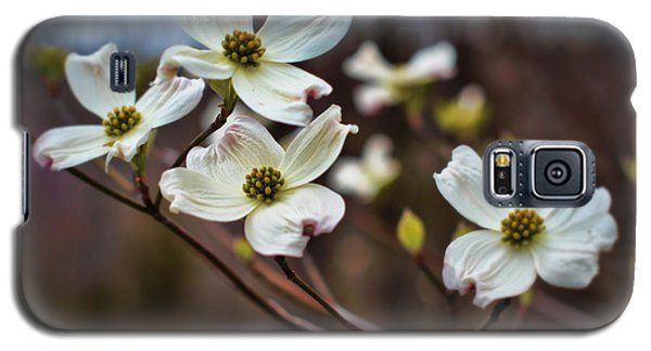 Missouri Dogwoods Galaxy S5 Case