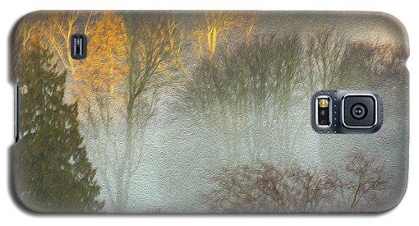 Mist In The Park Galaxy S5 Case