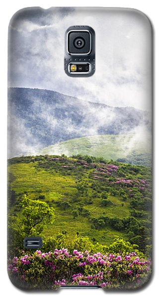 Rhododendrons - Roan Mountain Galaxy S5 Case