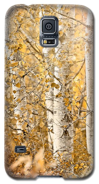 Misted Galaxy S5 Case