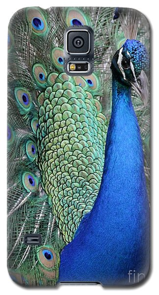 Mister Peacock Galaxy S5 Case