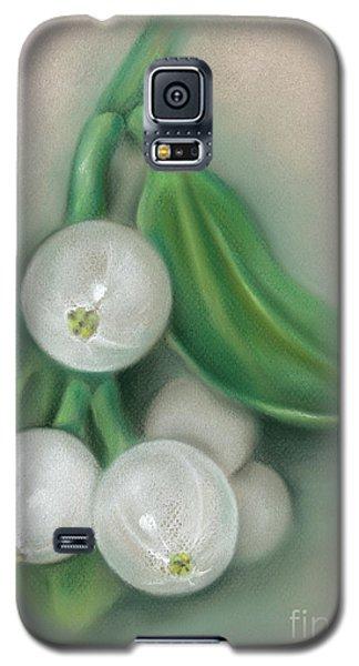 Mistletoe Berries Galaxy S5 Case