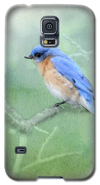 Galaxy S5 Case featuring the photograph Misty Blue by Betty LaRue