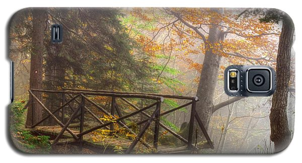 Misty Forest Galaxy S5 Case