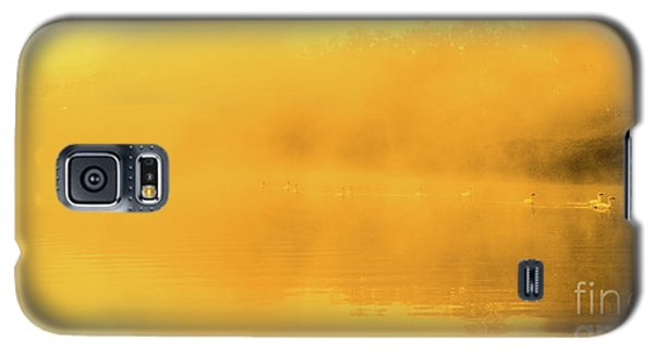 Misty Gold Galaxy S5 Case