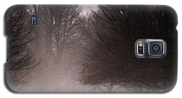 Misty Galaxy S5 Case