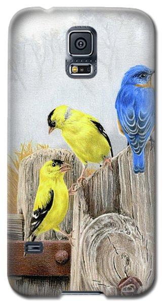 Finch Galaxy S5 Case - Misty Morning Meadow by Sarah Batalka