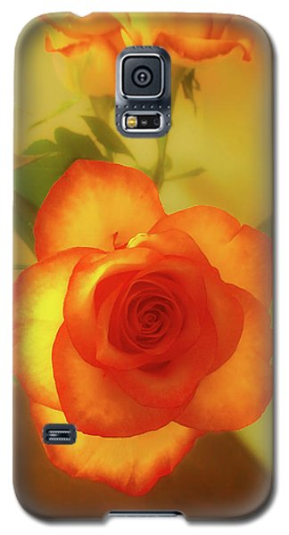 Misty Orange Rose Galaxy S5 Case