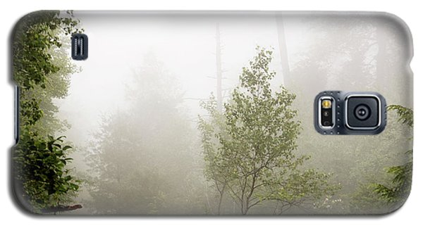 Misty Road At Forest Edge, Pocono Mountains, Pennsylvania Galaxy S5 Case
