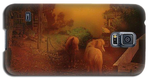 Misty Sundown Galaxy S5 Case