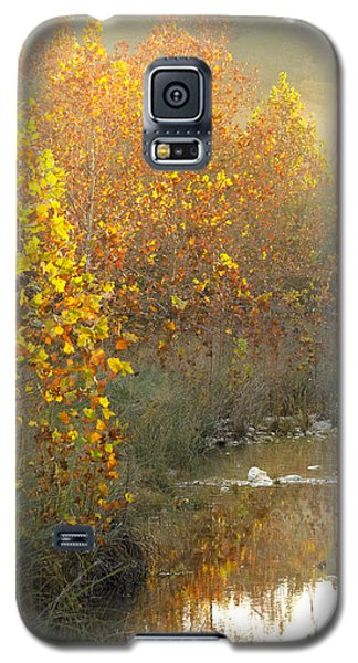 Misty Sunrise At Lost Maples State Park Galaxy S5 Case by Debbie Karnes