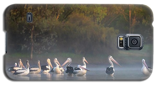 Misty Sunrise Galaxy S5 Case