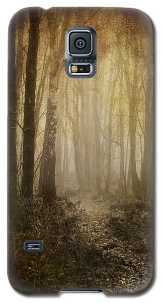 Misty Woodland Path Galaxy S5 Case