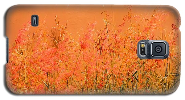 Misty Yellow Hue- Pink Blooms Galaxy S5 Case