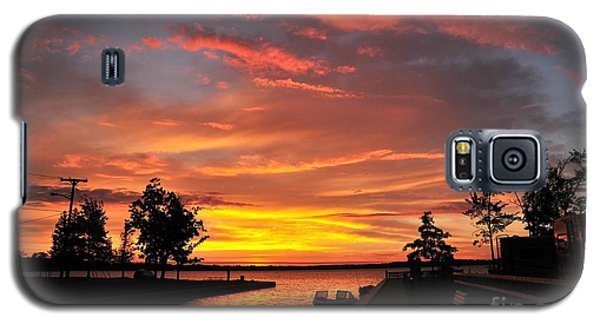 Mitchell State Park Cadillac Michigan Galaxy S5 Case by Terri Gostola