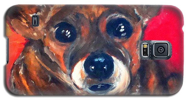 Mixed Breed- Sadie My Girl Galaxy S5 Case by Laura  Grisham