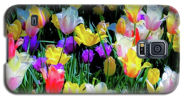 Mixed Tulips In Bloom  Galaxy S5 Case