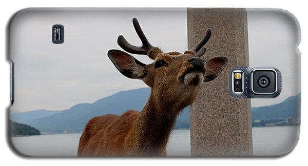 Miyajima Deer Galaxy S5 Case
