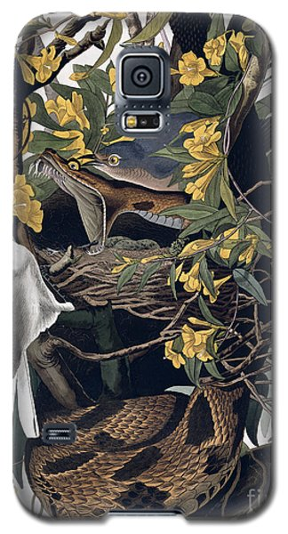 Mocking Birds And Rattlesnake Galaxy S5 Case by John James Audubon