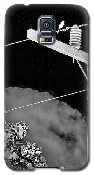 Mockingbird On A Wire Galaxy S5 Case