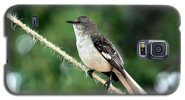 Mockingbird On Rope Galaxy S5 Case
