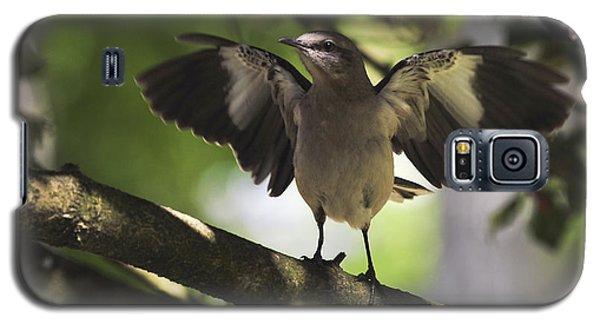 Mockingbird  Galaxy S5 Case