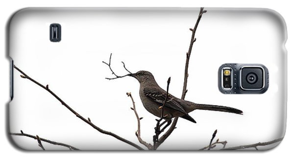 Mockingbird With Twig Galaxy S5 Case