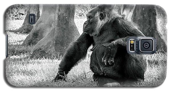 Modeling Gorilla Galaxy S5 Case