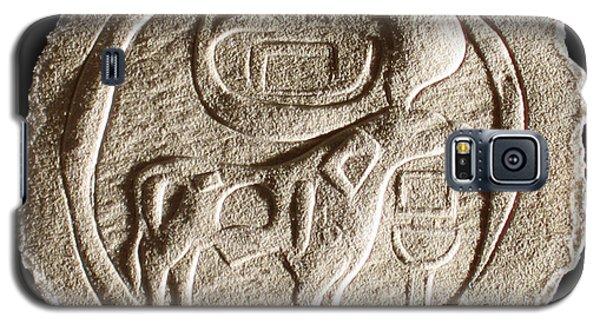 Mohenjodaro Seal Galaxy S5 Case by Suhas Tavkar