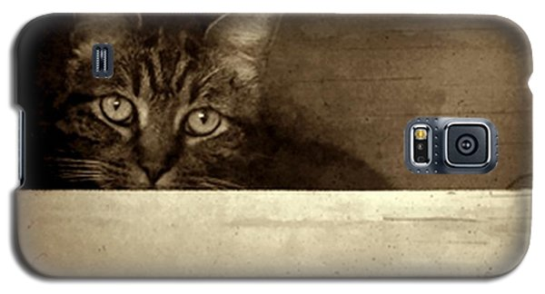 Mollie In A Box Galaxy S5 Case