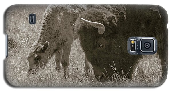 Galaxy S5 Case featuring the photograph Mom And Baby Buffalo by Rebecca Margraf
