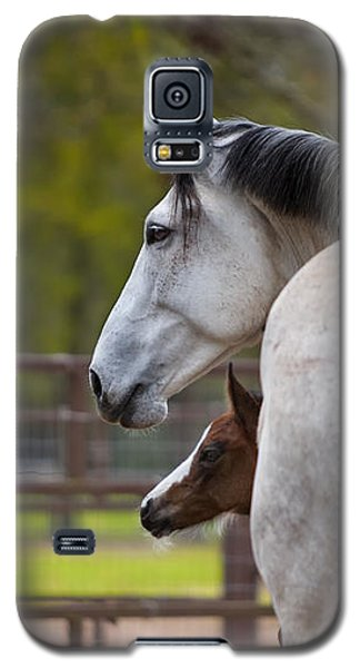 Galaxy S5 Case featuring the photograph Mom And Baby by Sharon Jones