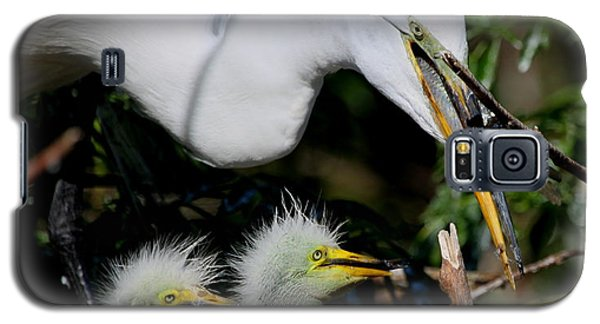 Momma Took Our Food Galaxy S5 Case by Barbara Bowen