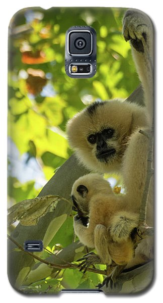 Mommy Gibbon Galaxy S5 Case