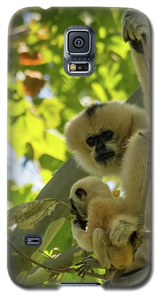 Mommy Gibbon Galaxy S5 Case