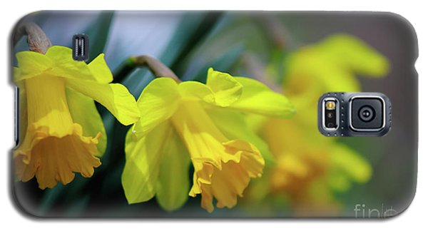 Galaxy S5 Case featuring the photograph Mom's Daffs by Lois Bryan