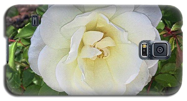 Moms Rose Galaxy S5 Case