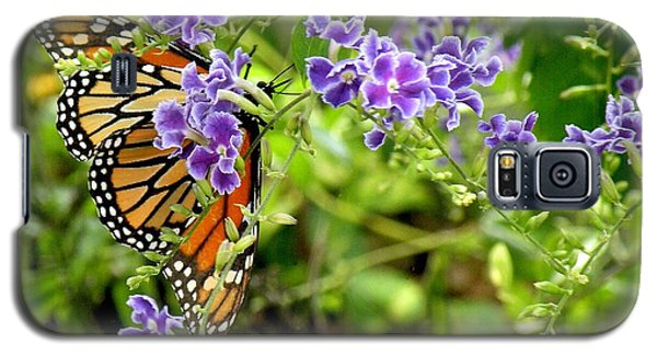Galaxy S5 Case featuring the photograph Monarch And Purple Flowers by Rosalie Scanlon