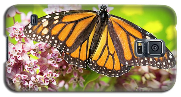 Galaxy S5 Case featuring the photograph Monarch Butterfly Closeup  by Ricky L Jones