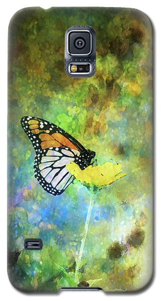 Monarch In Azure And Gold 5647 Idp_2 Galaxy S5 Case