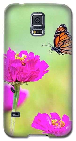 Monarch In Flight 1 Galaxy S5 Case