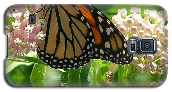 Galaxy S5 Case featuring the photograph Monarch Lunch by Rick Friedle