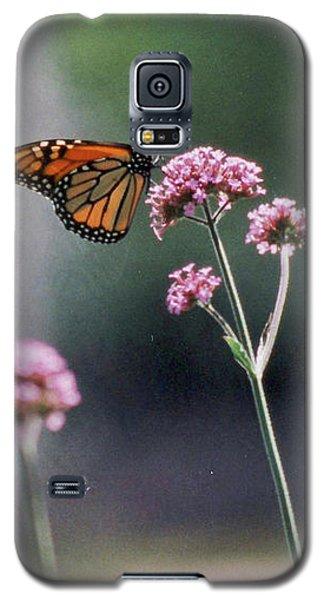 Monarch No. 7-1 Galaxy S5 Case