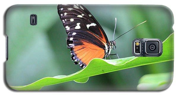 Monarch On Green Leaf Galaxy S5 Case