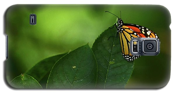 Galaxy S5 Case featuring the photograph Monarch On Leaf by Ann Bridges
