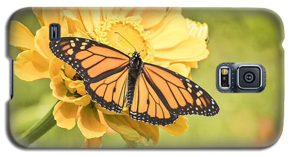 Monarch On Zinnia 5-2015 Galaxy S5 Case